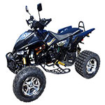 Bashan 250cc BS250AS-43