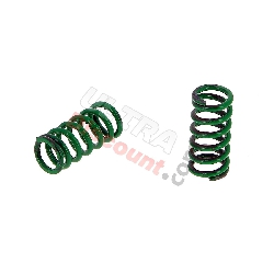 Ressorts Ultra Light Zocchi pour Embrayage 2 Branches de Pocket Supermotard (Vert)